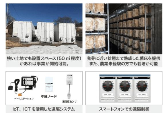 日本きくらげの栽培方法の画像